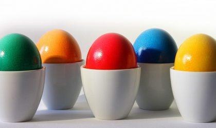 Auf Eiersuche